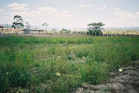 21-2003